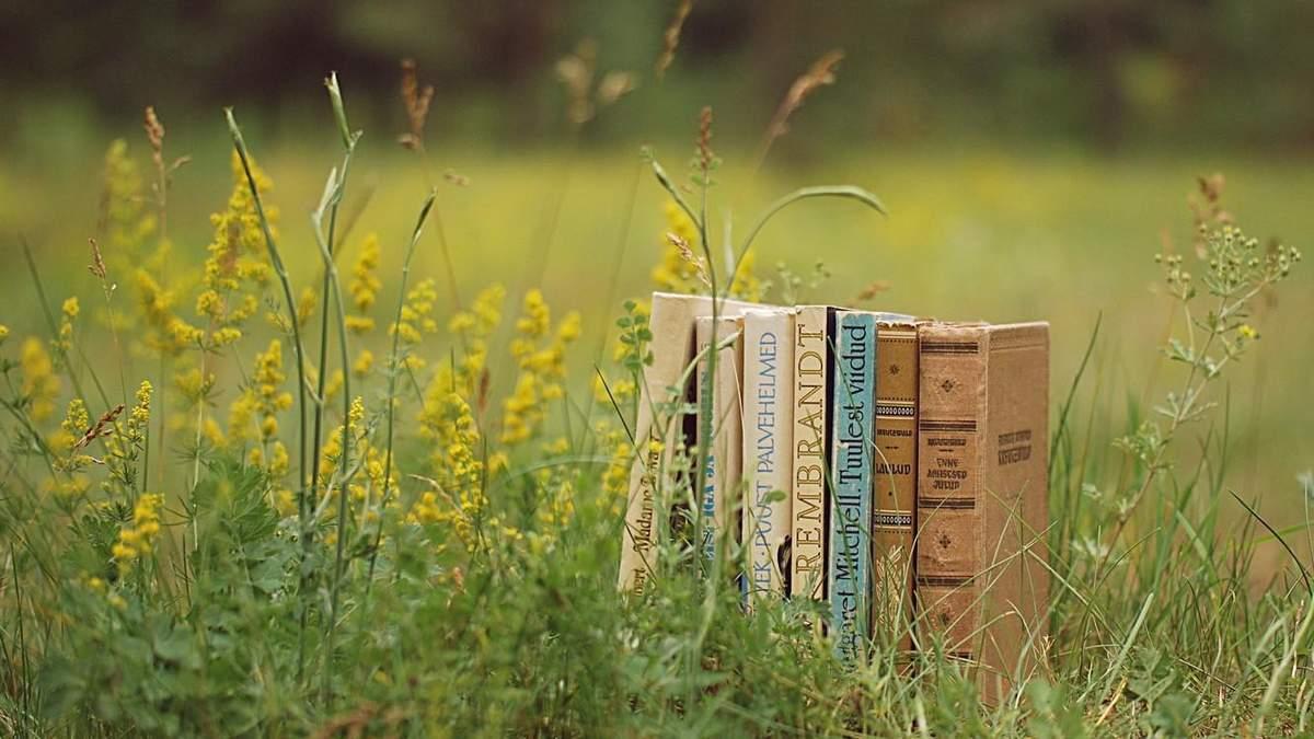 Подборка летних книг