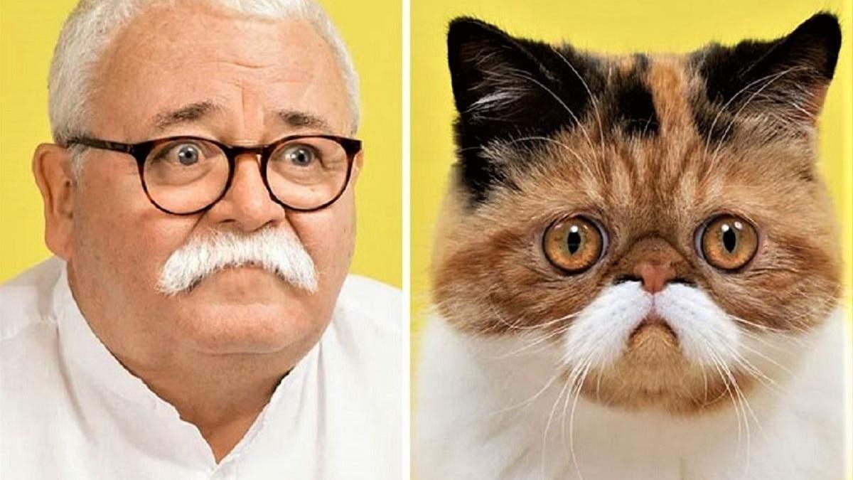 Дивовижна схожість кота та людини