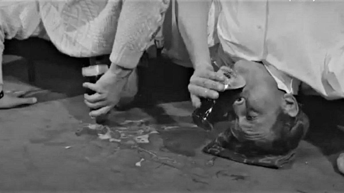 Алан Хантер – мастер выпивания вверх ногами