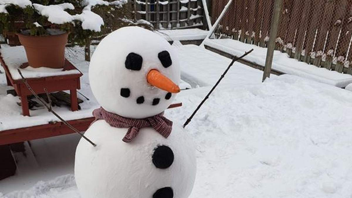 Зимние развлечения перфекционистов: девушка слепила идеального снеговика и покорила сеть