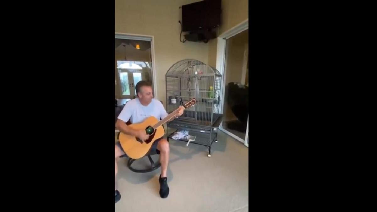 Попугай поет Led Zeppelin – вирусное видео