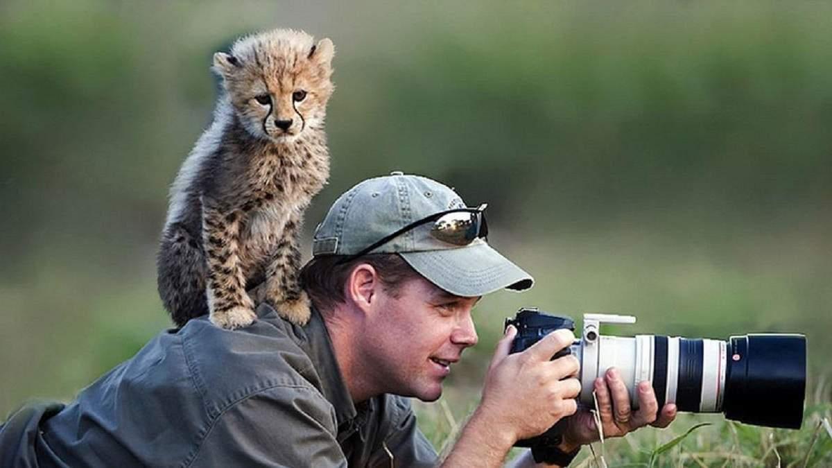 Дикие звери мешают фотографам