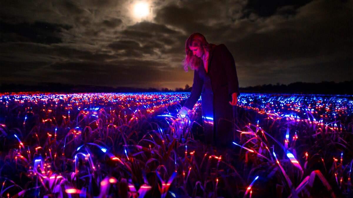 Художник создал инсталляцию с ультрафиолетовым светом на поле с луком: удивительные фото, видео
