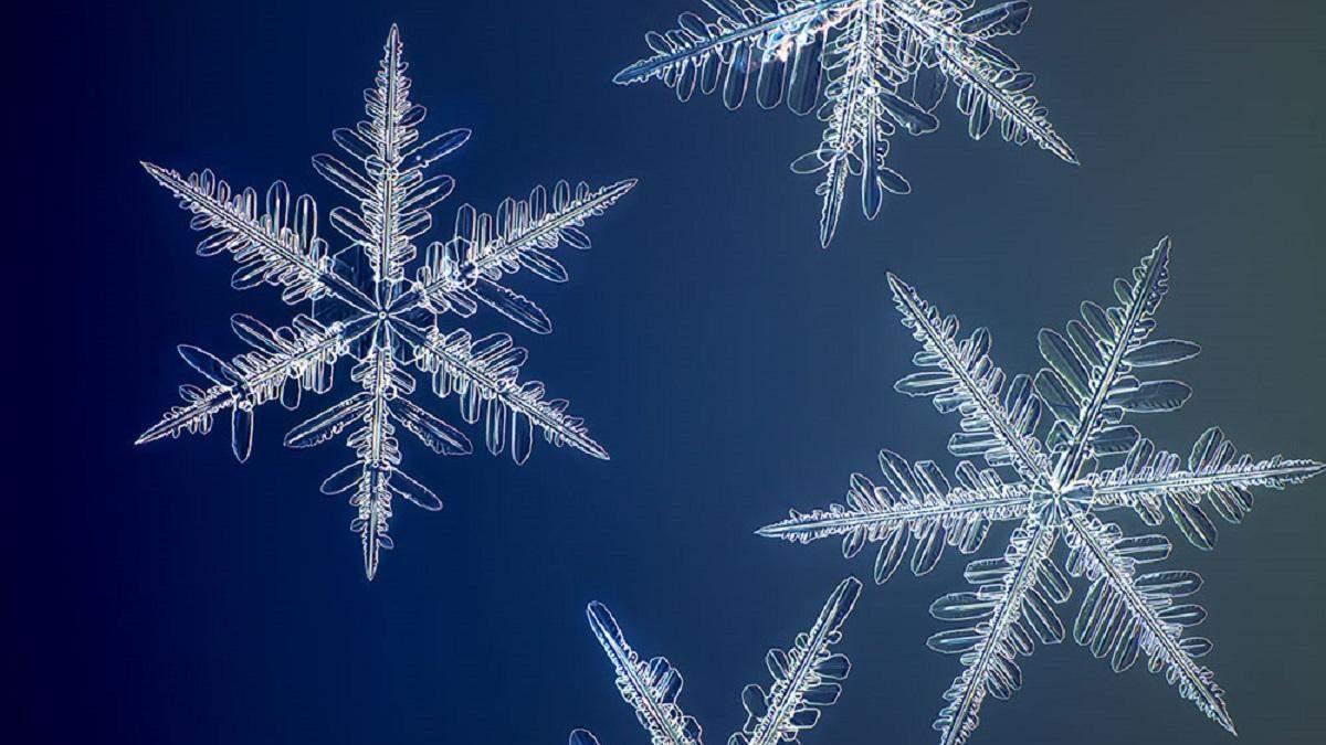 Фотограф зробив найдетальніші світлини сніжинок у світі: як йому це вдалося