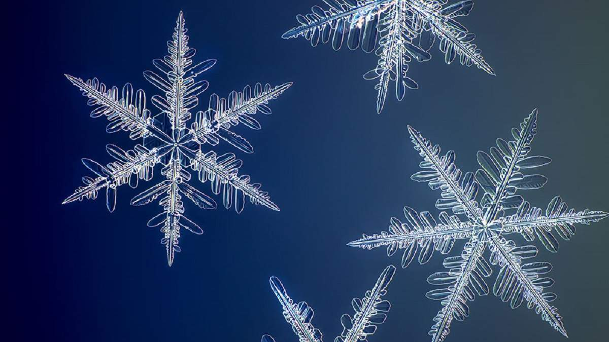 Самые подробные фотографии снежинок в мире