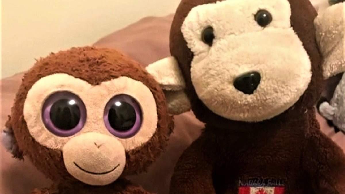 5 тисяч доларів за мавпочок: американець заплатить винагороду за повернення вкрадених іграшок