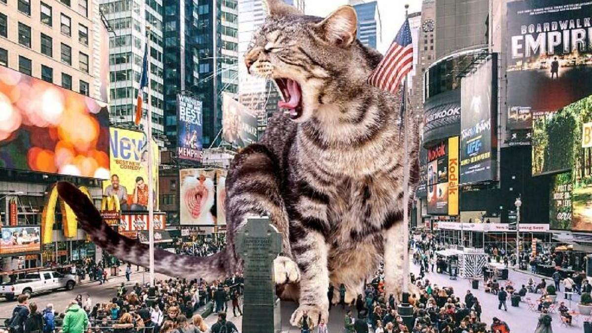 Американский художник создает сюрреалистические коллажи с котиками: галлюциногенные иллюстрации