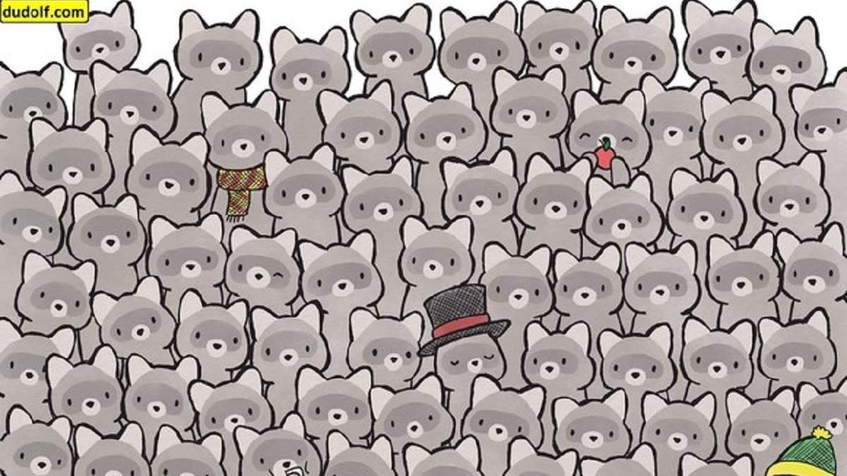 Головоломка тижня: справа про зниклого кота
