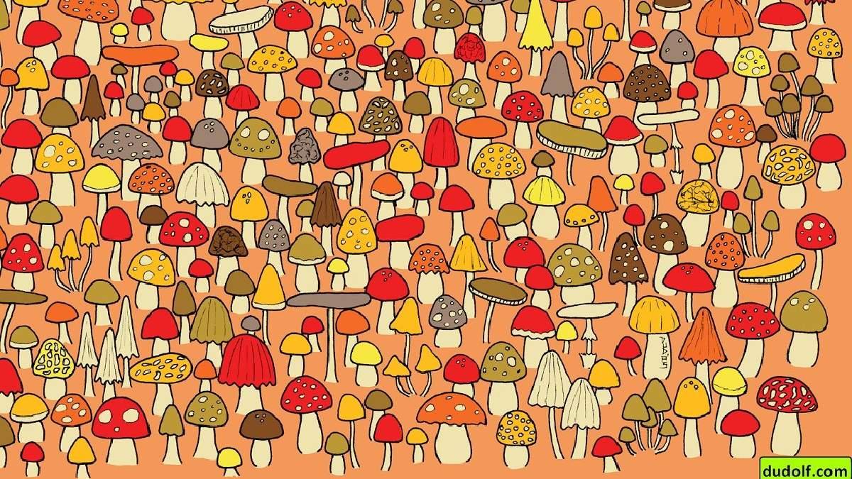Головоломка тижня: прокачайте навики спостереження і знайдіть мишу, що ховається у грибному полі
