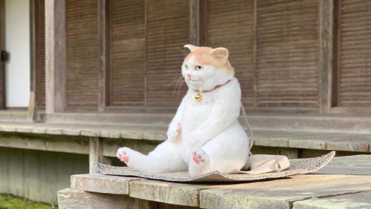 У вигляді абсолютно натурального кота: в Японії створили незвичайний рюкзак
