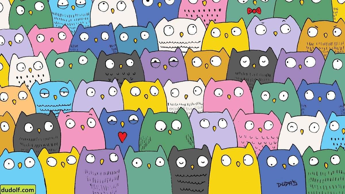 Головоломка недели: совы не те, кем кажутся – найдите котика среди птиц