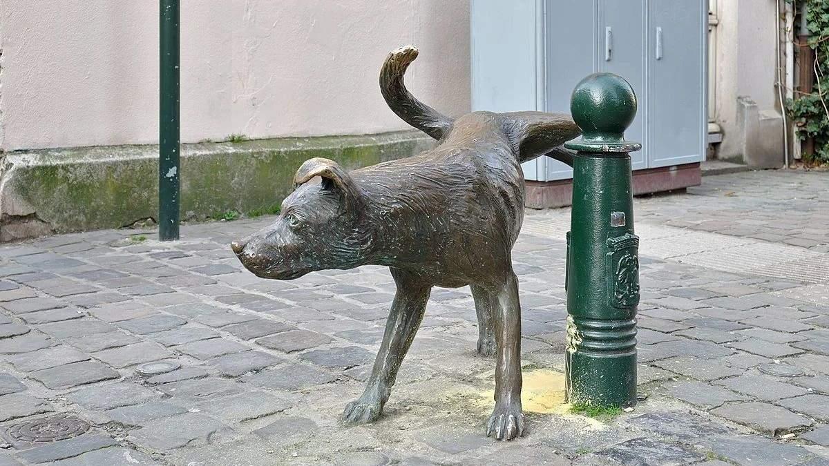 Собаки не знають хороших манер: у Японії в аварії світлофора звинуватили песиків