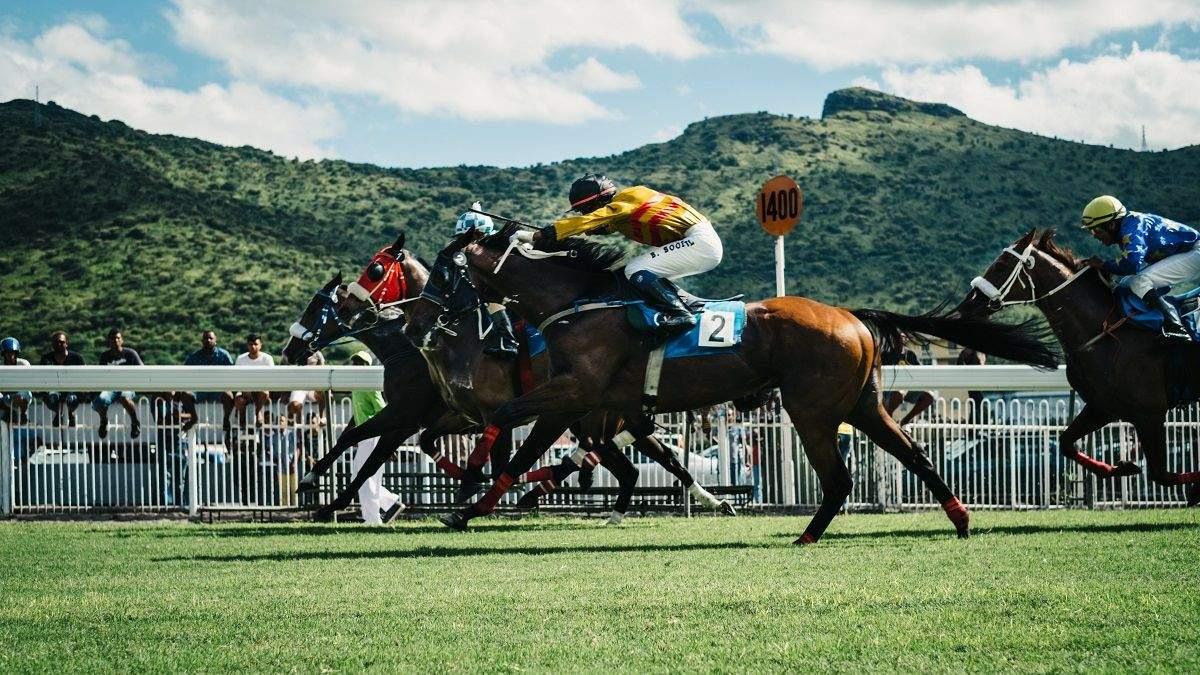 Королевские азартные игры: как спортивные ставки приобрели огромную популярность в мире