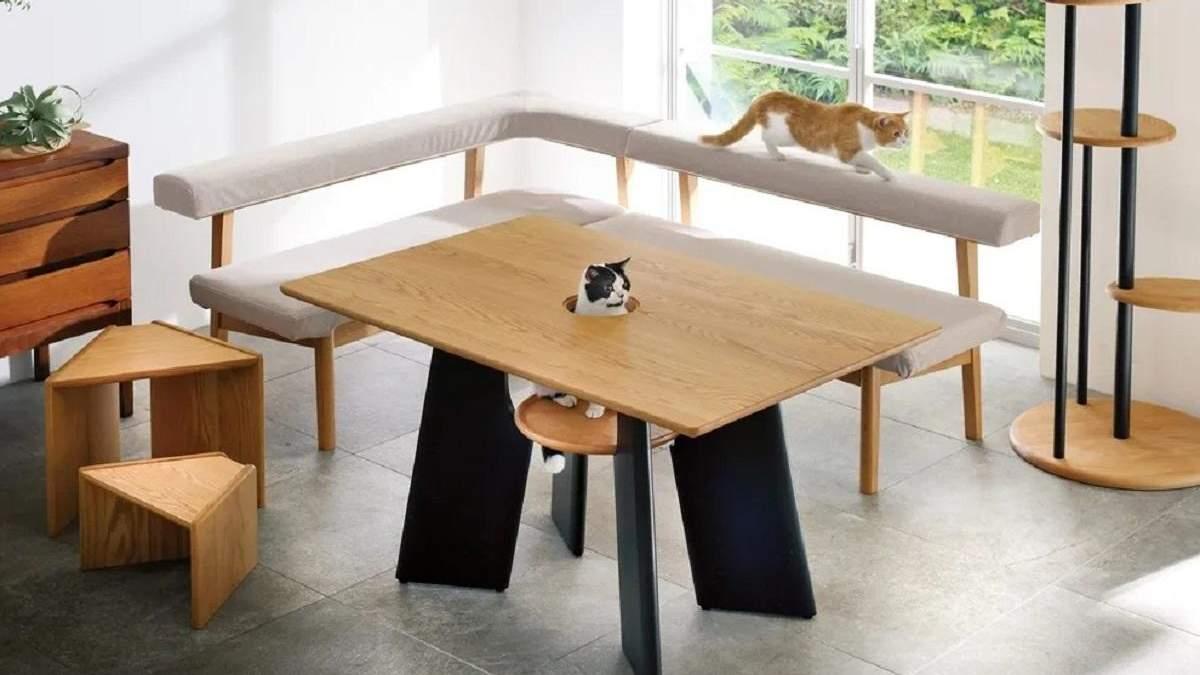 Чтобы обедать вместе с любимцем: в Японии разработали стол с отверстием для кота