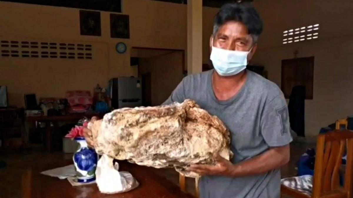В Таиланде мужчина случайно нашел на пляже ценное вещество стоимостью более 1 000 000 долларов - Развлечения