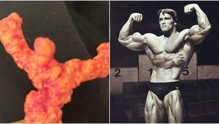 Американец нашел чипс в виде Арнольда Шварценеггера и продал его за огромные деньги: фото