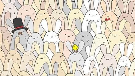 Головоломка недели: сможете ли вы найти яйцо