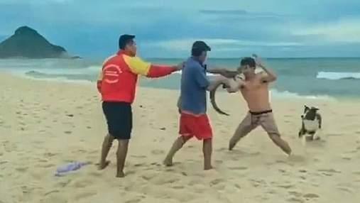 Мужчина использовал крокодила как необычное оружие во время драки на пляже: странное видео